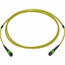 MTP/MPO Trunk-Kabel OS2